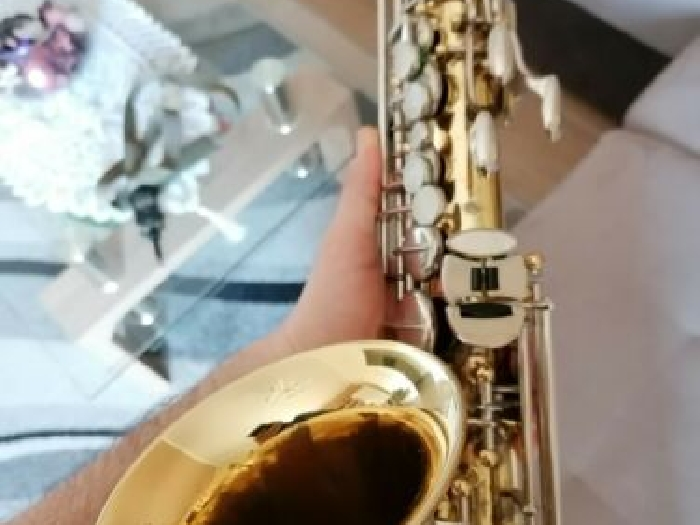 Alto saxophone Grassi Professional made in Italy, Selmer competiror vintage sax